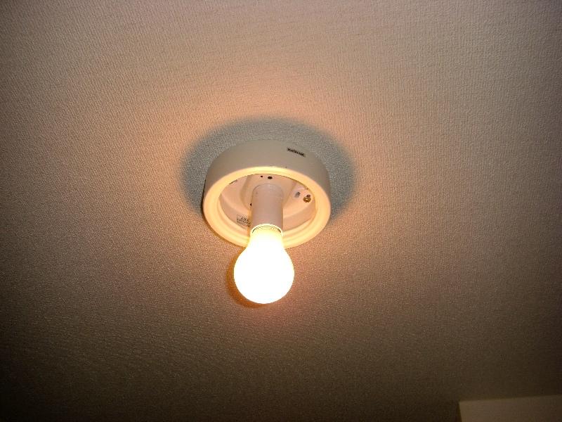 LED_022.jpg