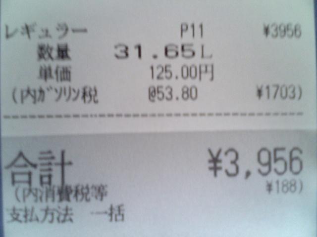 V9057996.JPG