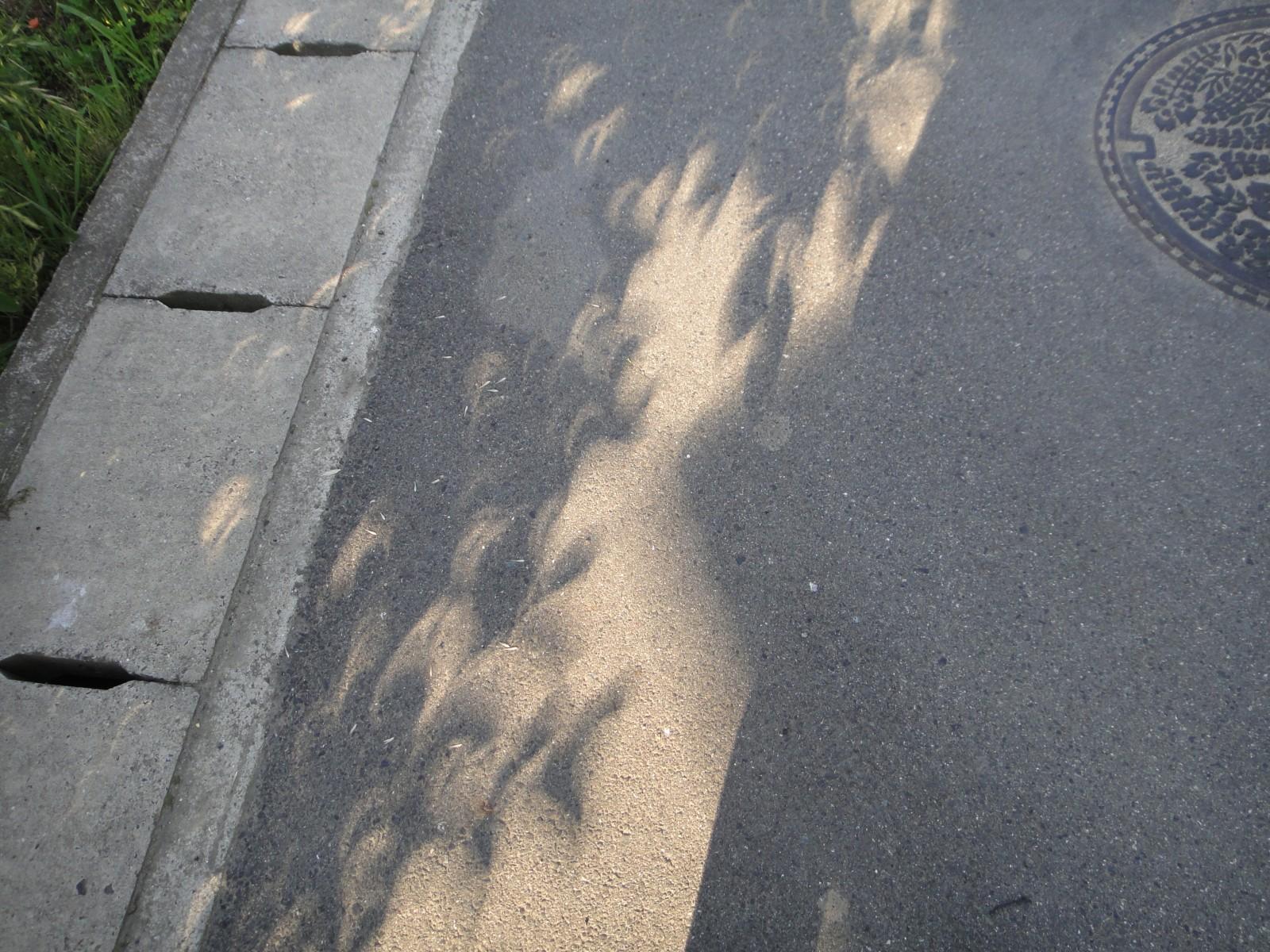 Solar_Eclipse_013.jpg