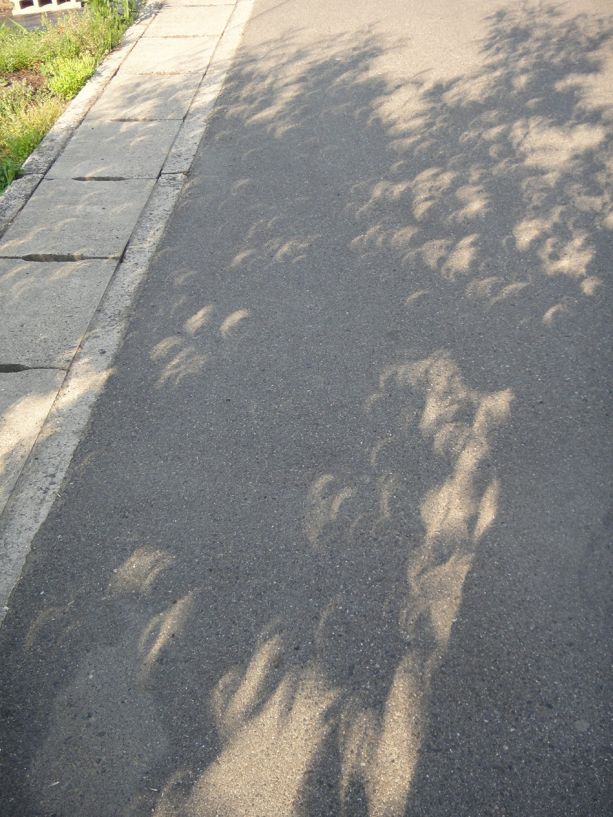 Solar_Eclipse_014.jpg
